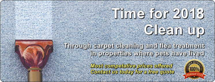 Cleaner Carpets Bristol